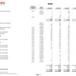 TMO - Debt Schedule as at June 30 2018