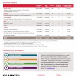 GWW - Company Snapshot page 2