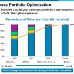 PPG - Business Portfolio Optimization