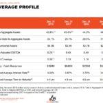 SRU - Leverage Profile